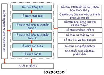 Các bước áp dụng ISO 22000 vào thực tế sản xuất, chế biến thực phẩm