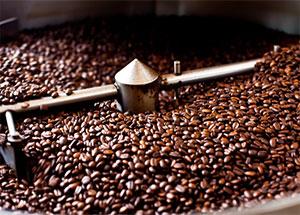 Cơ sở chế biến cà phê cần đạt quy chuẩn nào?