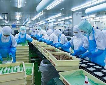 Loạt tiêu chuẩn ISO cho lĩnh vực sản xuất thực phẩm