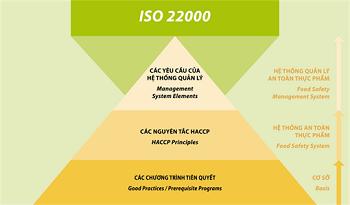 Làm sao để đáp ứng các yêu cầu của ISO 22000?